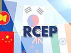 """RCEP签署 家电行业迎来""""大礼包"""""""