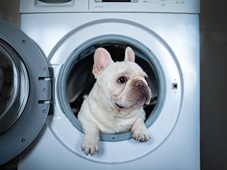 """冬季 别让洗衣机""""吃""""太多"""