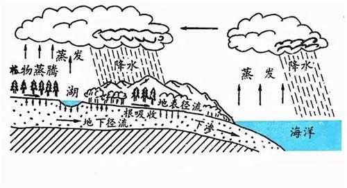 净水知识关于一滴水 我们了解多少呢?(图1)