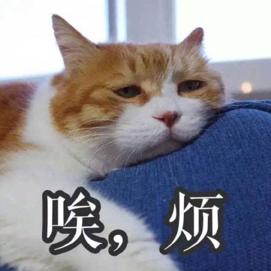 src=http-%2F%2Fimage.biaobaiju.com%2Fuploads%2F20181017%2F20%2F1539780549-zwSExrlFVt.jpg&refer=http-%2F%2Fimage.biaobaiju
