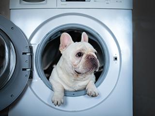 工作中的洗衣机不要随意摸