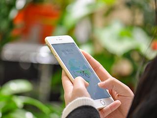 全球智能手机销量预计将达到15亿部 同比增长11.4%