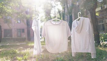 明明新洗的衣服为何总沾满毛絮
