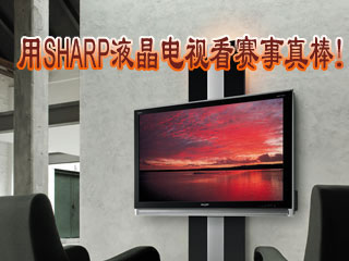 用SHARP液晶电视看赛事真棒