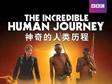 探索人类迈向辉煌之路 《神奇的人类历程》