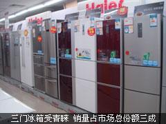 三门冰箱受青睐 销量占市场总份额三成